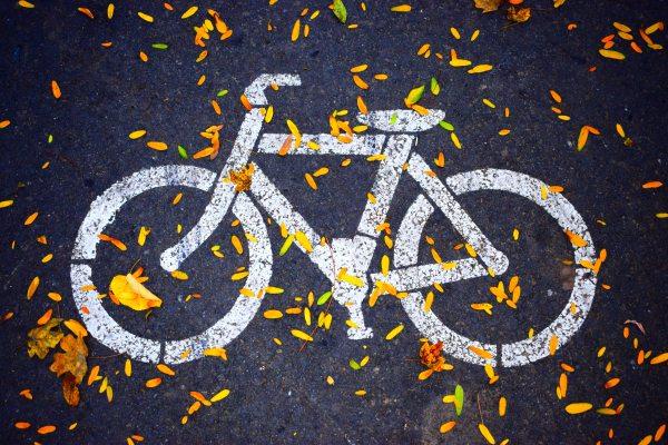 asphalt-bicycle-bike-686230